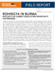 Rohingya in Burma: Spotlight on Current Crisis Offers Opportunity for Progress