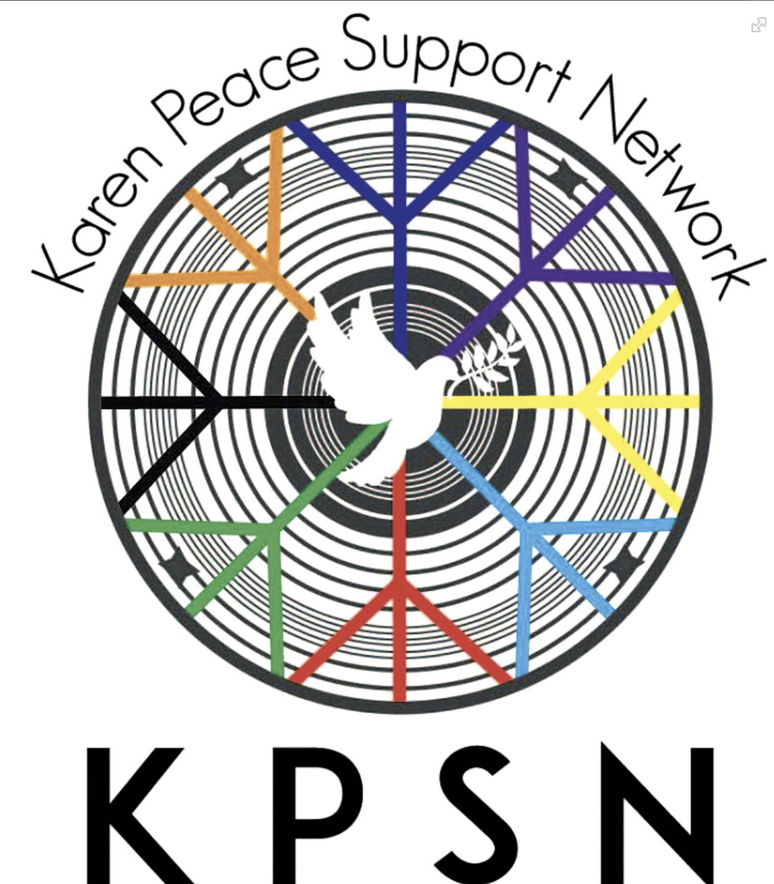 Terror from the Skies – Karen Peace Support Network briefing